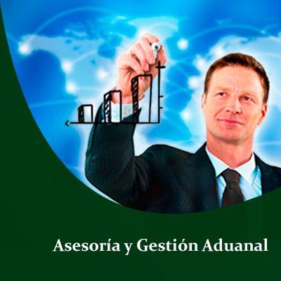 Agencia Aduanal en Asesoría y Gestión Aduanal , Padrón de importadores , Padrón sectorial Textil , Padrón sectorial Calzado , Padrón sectorial Siderúrgico